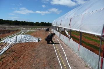 On prépare le système d'irrigation